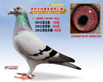 陕西宝鸡鑫昊公棚三关决赛198名