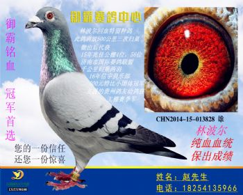 CHN201415013828雄(1)