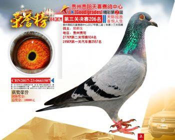 贵州天喜决赛206名