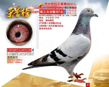 贵州天喜决赛207名