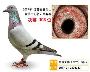 江苏五台山决赛103名