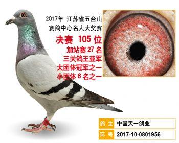 江苏五台山决赛105名