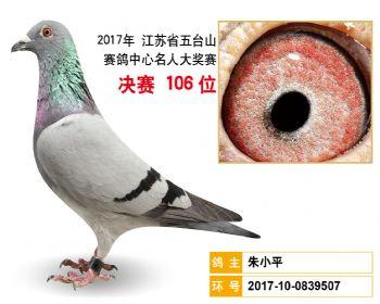 江苏五台山决赛106名