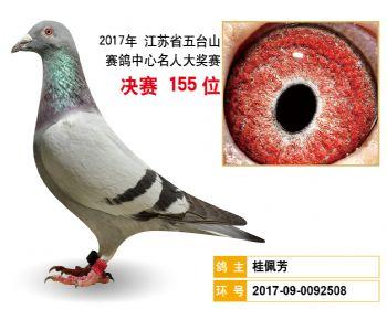江苏五台山决赛155名