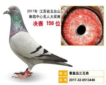 江苏五台山决赛156名
