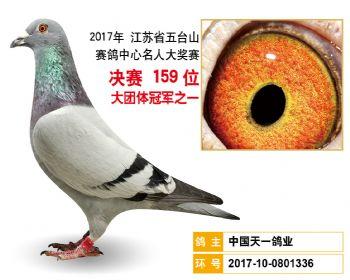 江苏五台山决赛159名