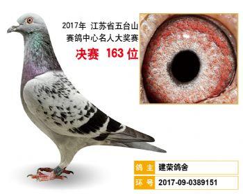 江苏五台山决赛163名