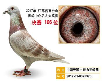 江苏五台山决赛166名