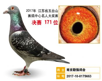 江苏五台山决赛171名