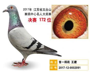 江苏五台山决赛172名