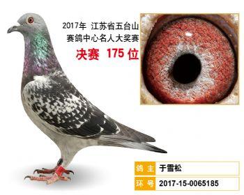 江苏五台山决赛175名