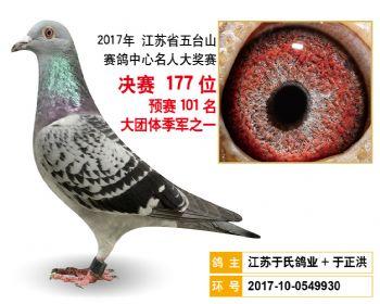 江苏五台山决赛177名
