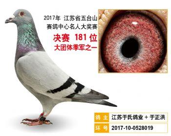 江苏五台山决赛181名