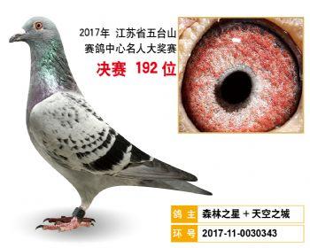 江苏五台山决赛192名