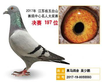 江苏五台山决赛197名