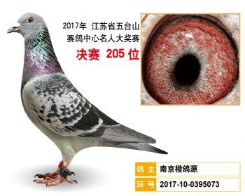 江苏五台山决赛205名