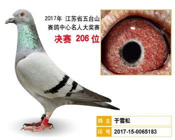 江苏五台山决赛206名
