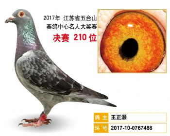 江苏五台山决赛210名