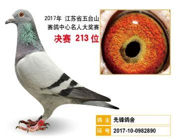 江苏五台山决赛213名