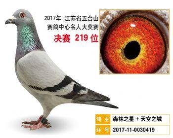 江苏五台山决赛219名