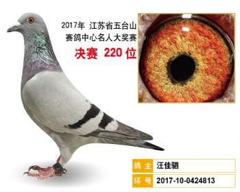 江苏五台山决赛220名