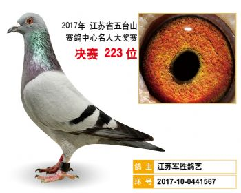 江苏五台山决赛223名