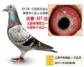 江苏五台山决赛227名