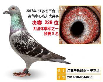 江苏五台山决赛228名