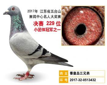 江苏五台山决赛229名