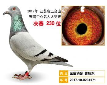 江苏五台山决赛230名