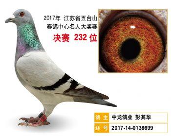 江苏五台山决赛232名