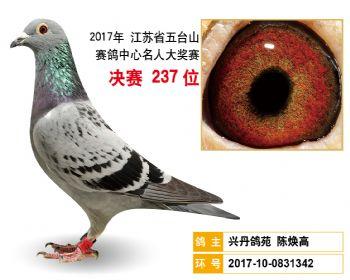 江苏五台山决赛237名