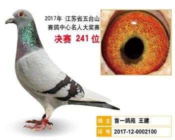 江苏五台山决赛241名