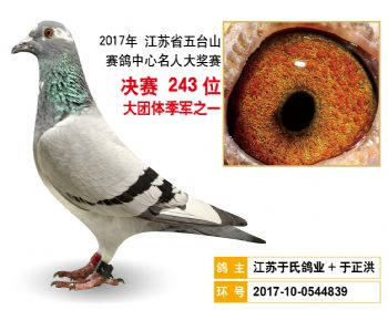 江苏五台山决赛243名