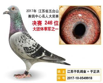 江苏五台山决赛246名