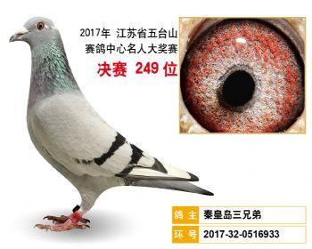 江苏五台山决赛249名