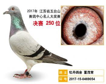 江苏五台山决赛250名