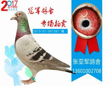 昌平特比 201301501381 雄