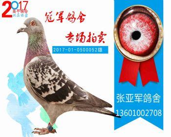 昌平82名 2017010500052 雄