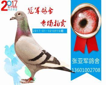 昌平325名 2017011010910 雌