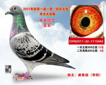 """襄阳火车头""""风雨无阻""""双关综合亚军"""