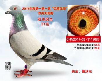 """襄阳火车头""""风雨无阻""""双关综合31名"""