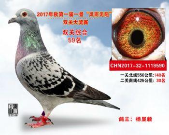 """襄阳火车头""""风雨无阻""""双关综合59名"""