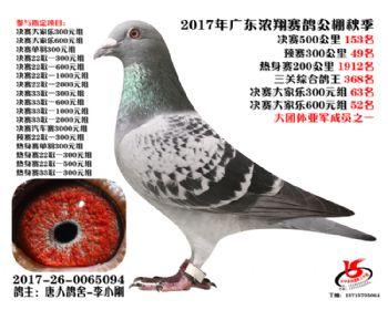 广东浓翔获奖鸽153名