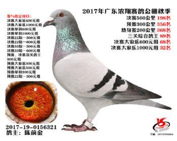 广东浓翔获奖鸽198名