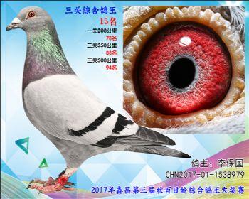 15李保国飞戈X卡普詹森参考雌