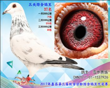 37 雪中贵族(詹吉X詹森凡龙)参考雄