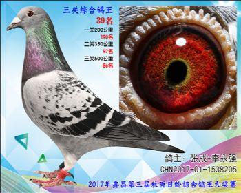 39 张成+李永强艾迪夏拉肯X赫伯特参考雌
