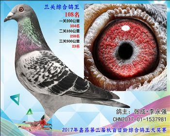 108 张成+李永强艾迪夏拉肯X赫伯特参考雌