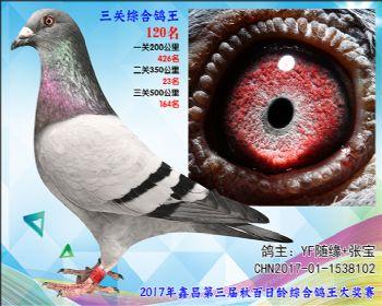 120 YF随缘+张宝速霸龙参考雄